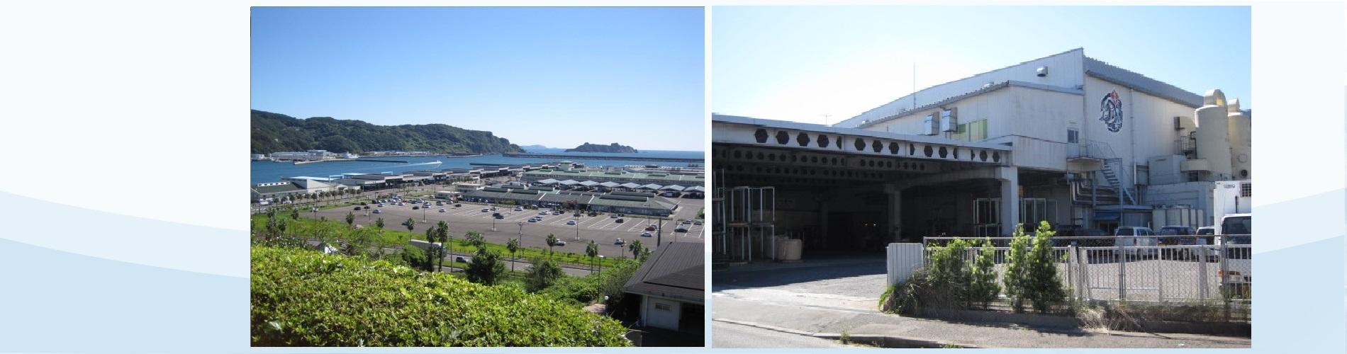 長崎の海の恵みを食卓へ